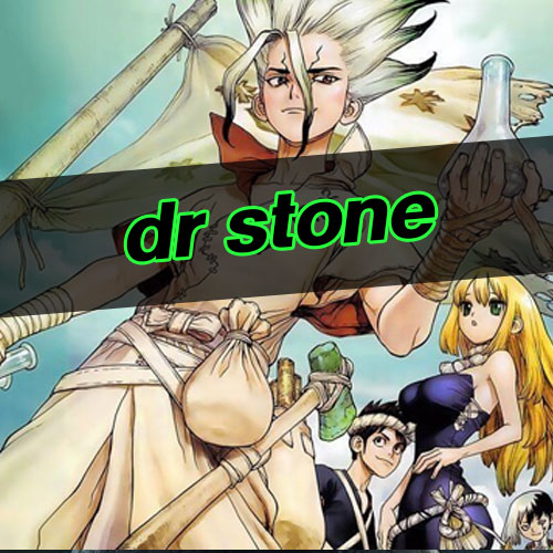 dr stone